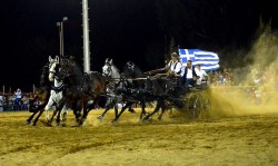 Attelage de chevaux Andravida