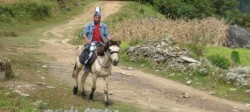 Cavalier et son poney du Bhoutan