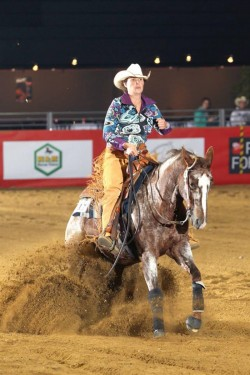 Cheval Appaloosa en équitation Western