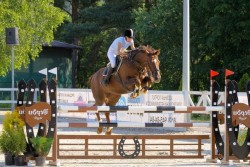 Cheval Boudienny en saut d'obstacle