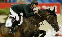Cheval de sport brésilien en saut d'obstacle