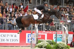 Cheval Holsteiner en saut d'obstacle
