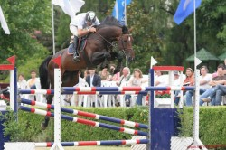 Cheval Selle Argentin en saut d'obstacle