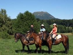 Chevaux d'Auvergne en équitation de loisir
