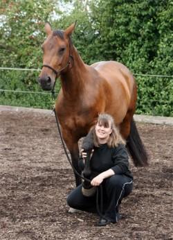 L'Altwürttemberg cheval de famille