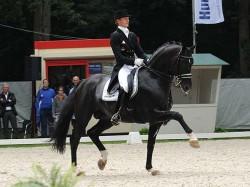Le célèbre cheval Totilas