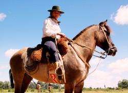 Le cheval Campeiro