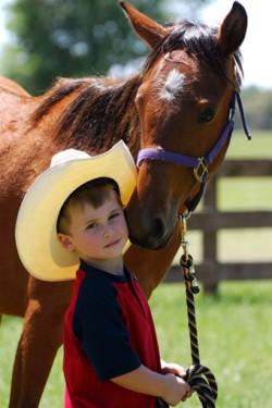 Le Florida Cracker Horse et un enfant