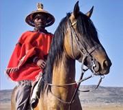 Le poney Basuto et son cavalier