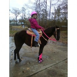 Petite fille et son American Walking Pony