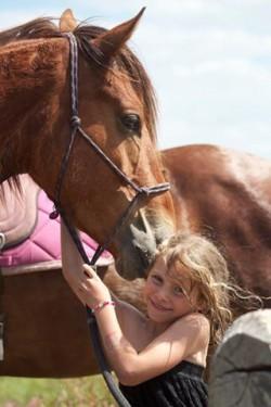Petite fille et son cheval Kaimanawa