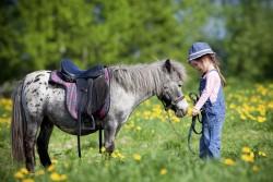 Petite fille et son poney Achetta