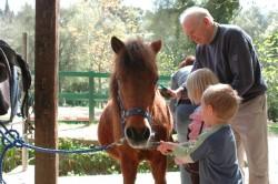 Poney Skyros et des enfants