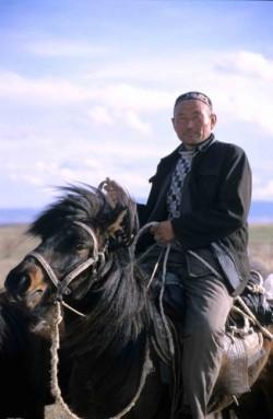 Portrait d'un cheval Kazakh et de son cavalier