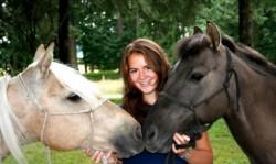 Portrait de chevaux Blazer
