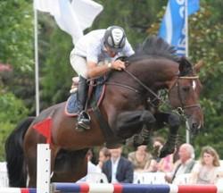 Silla Argentino en saut d'obstacle