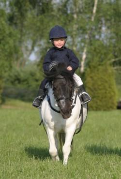 Un enfant et son poney Shetland